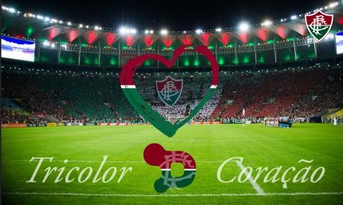 faca6cfb99 Passa a valer a partir de hoje o novo contrato de material esportivo do  Fluminense. A canadense Dry World chega para substituir a Adidas após 20  anos de ...