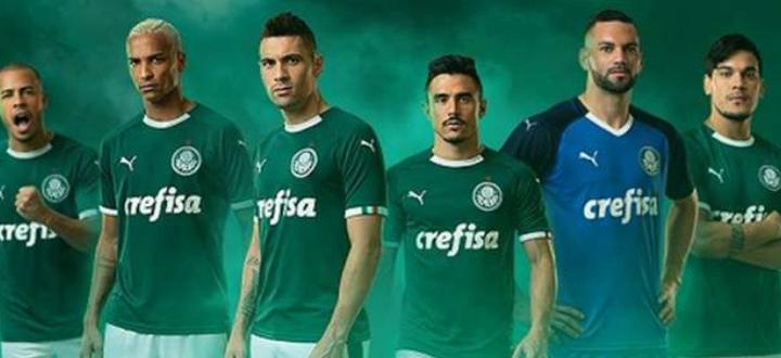 Palmeiras Puma 2019